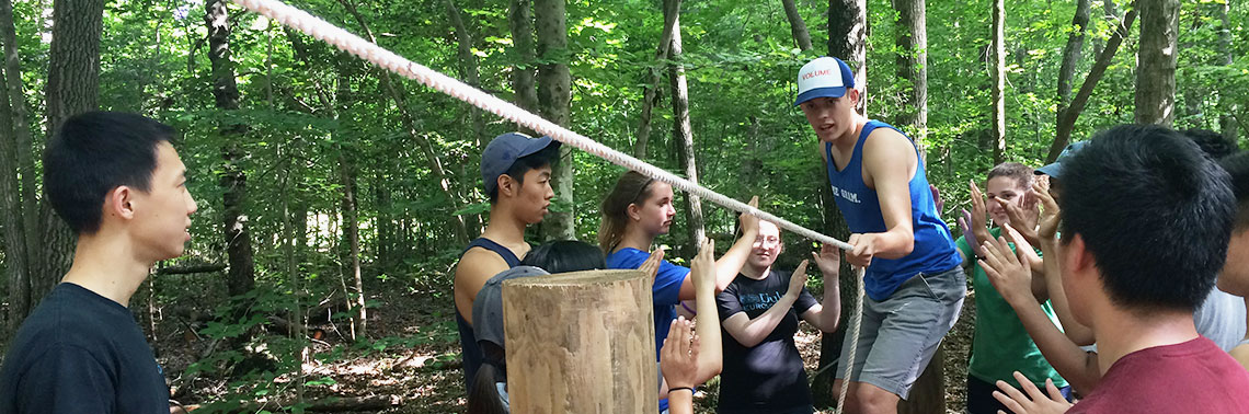 The Huang Fellows take on the low ropes course