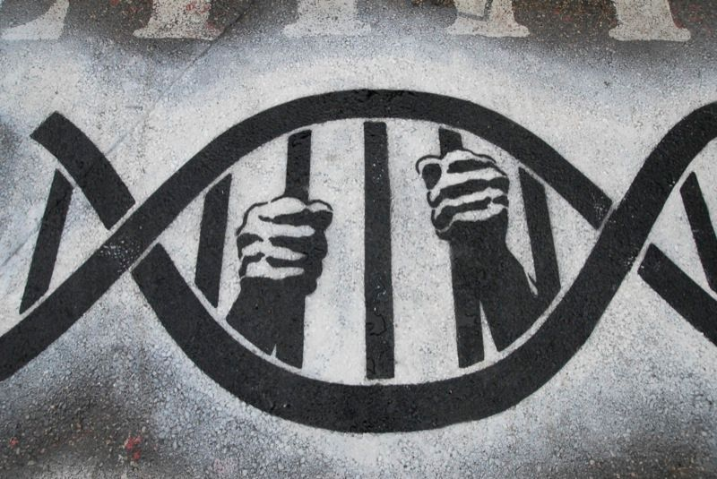 law-enforcement-dna